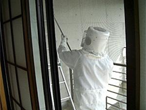 2.スズメバチの巣駆除中
