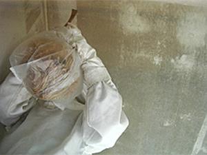 3.スズメバチの巣駆除中