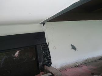 屋根板がついていなところからの侵入