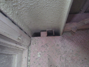 換気扇からのコウモリの侵入口